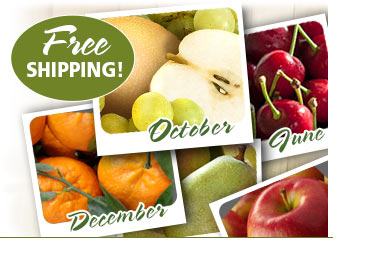 CUSTOMIZE A MONTHLY GIFT WITH FREE SHIPPING!