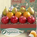 RB2000, Organic Catalina Trio Grande Fruit Gift