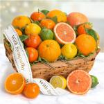 Sympathy Sweet Sunshine Citrus Fruit Gift Basket