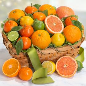 Fruit Basket Gifts