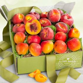 AB1090, Summer Fruit Box with Peaches and Apricots