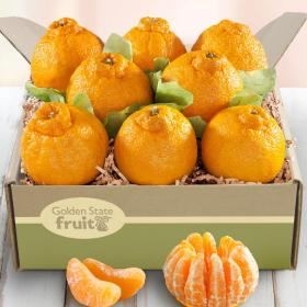 AB1039, SUMO CITRUS® Dekopon Gift Box