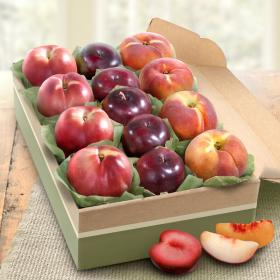 AB2011, Summer Fruit Collection Deluxe Gift Box