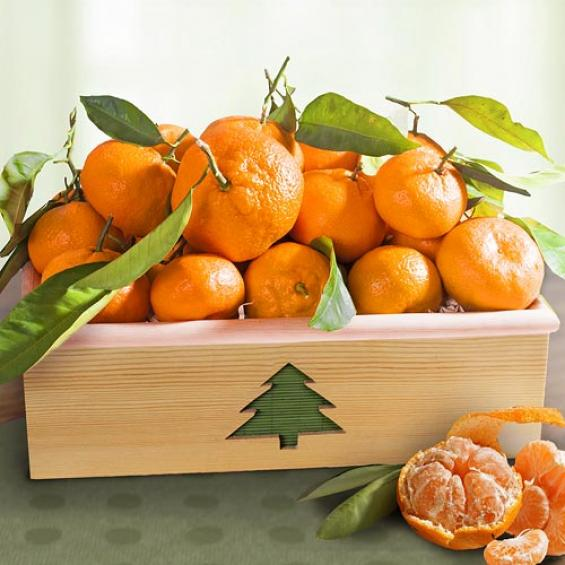 AC0009, Season's Greetings Satsuma Mandarins Deluxe Crate