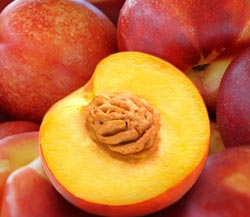 Sugarine Nectarines