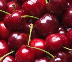 Organic Bing Cherries