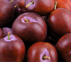 Organic Red Plums