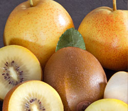 Reddy Robin Apple Pears & Sungold Kiwifruit