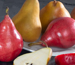 Red & Russeted Pear Medley