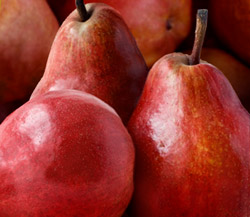 Rivermaid Red Pears